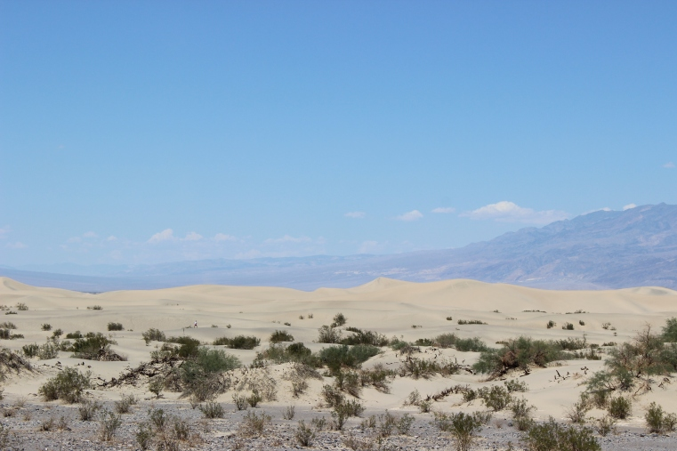 Beatiful white sand dunes along the way
