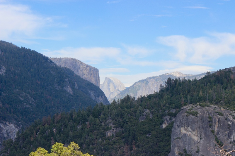 View of the Half Dome